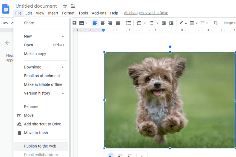 how to download pics from google docs