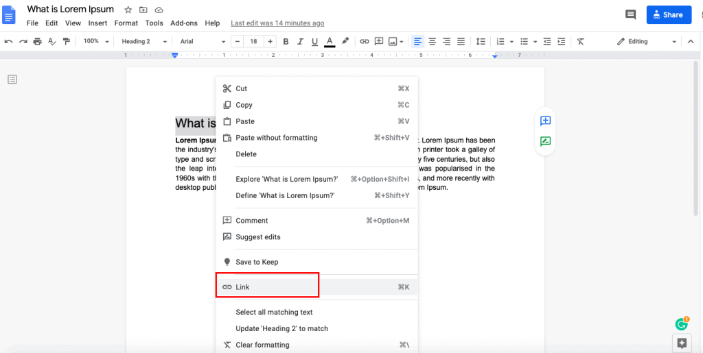 Google docs link within document